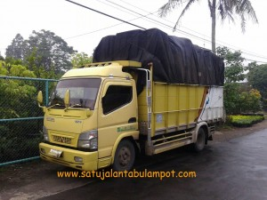 Truck Pot